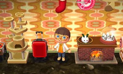 スーツケース:配信プレゼント -  04 - とびだせどうぶつの森 amiibo+