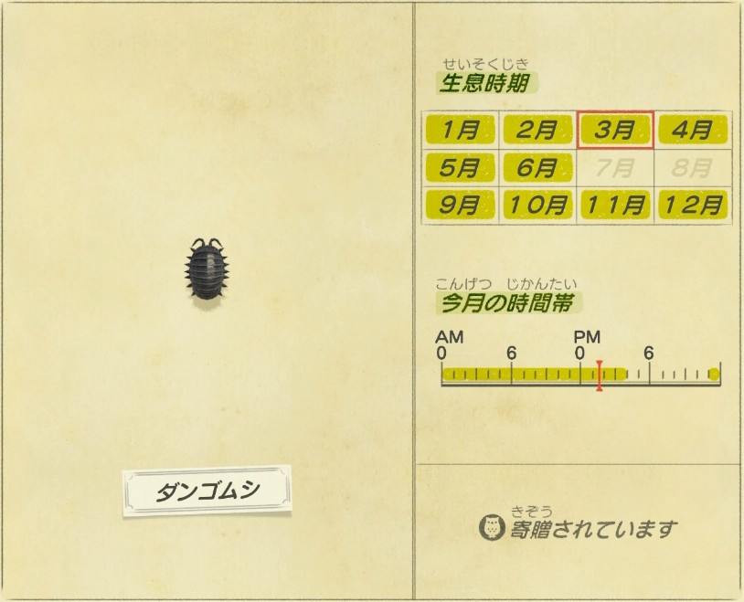 Dango mushi - Pillbug
