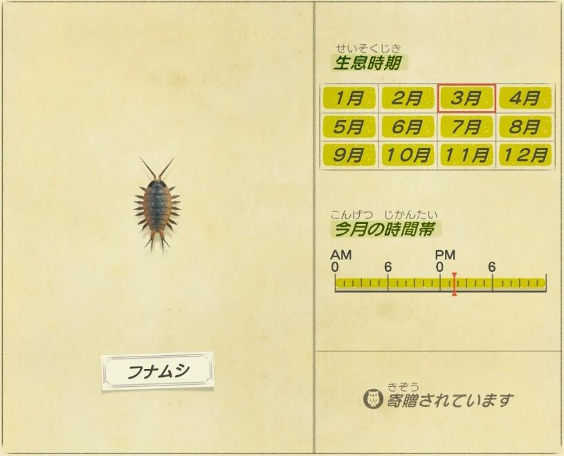 Funa mushi - Wharf roach