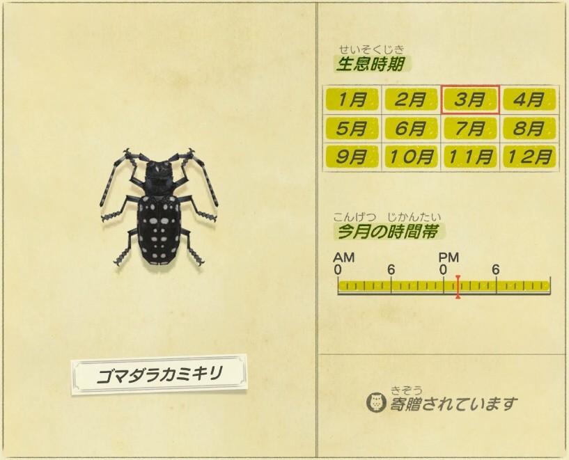 Gomadara Kamikiri - White-spotted-longhorn-beetle