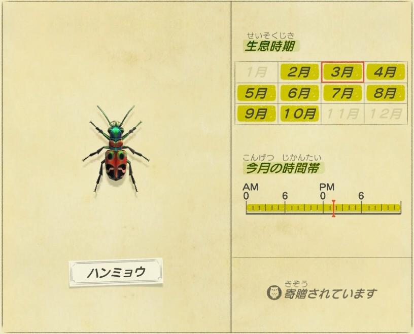 Hanmyou - Tiger beetle