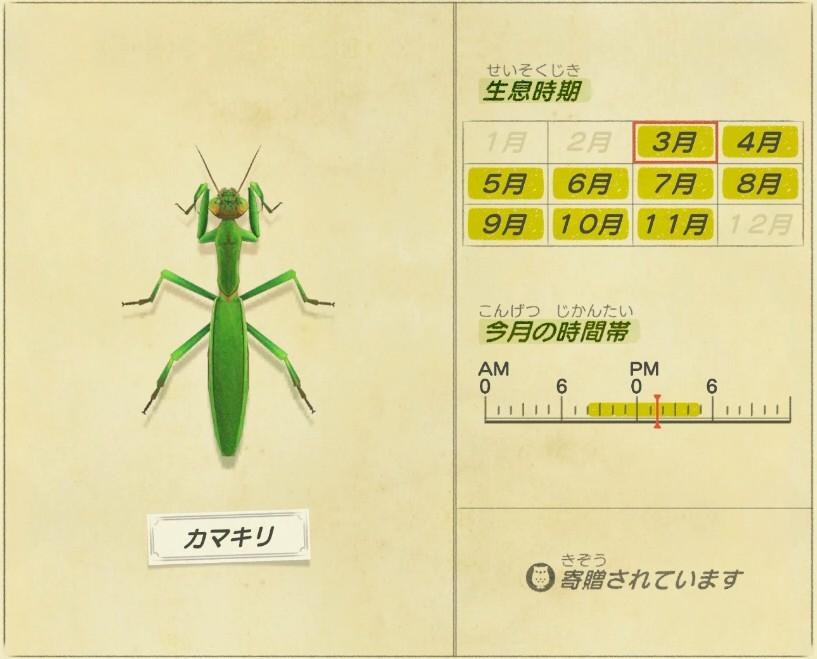 Kamakiri - Mantis