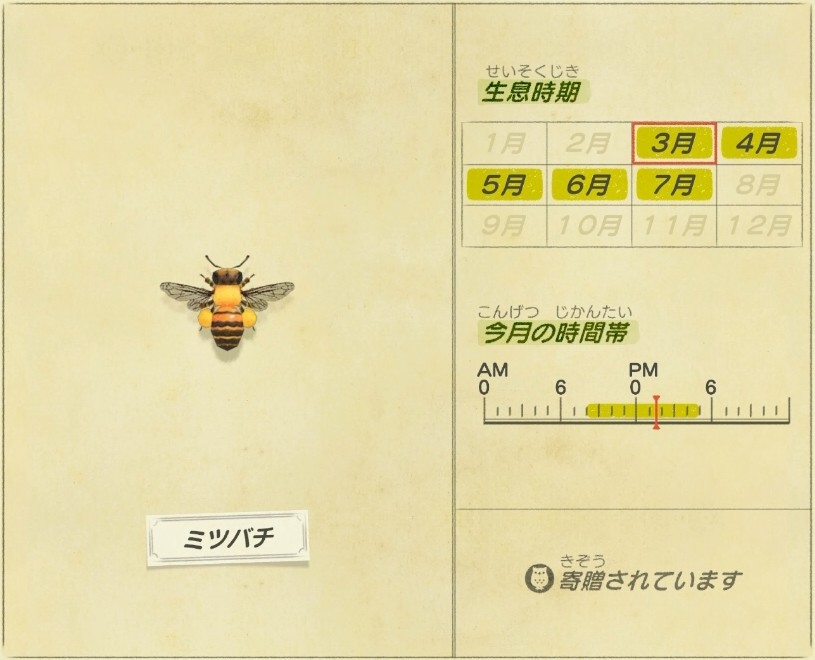 Mitsubachi - honey bee