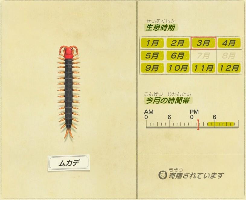 Mukade - Centipede