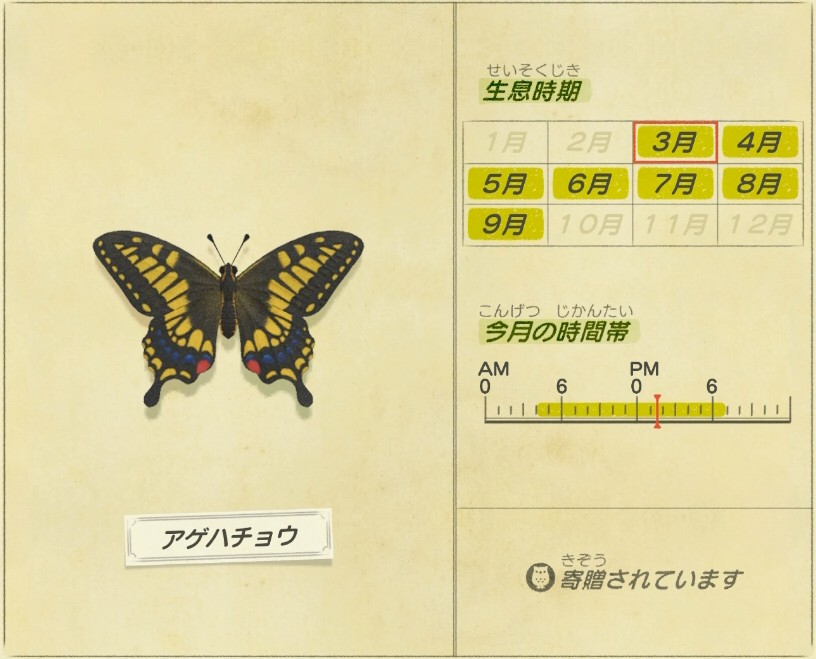 アゲハチョウ - Swallowtail butterfly