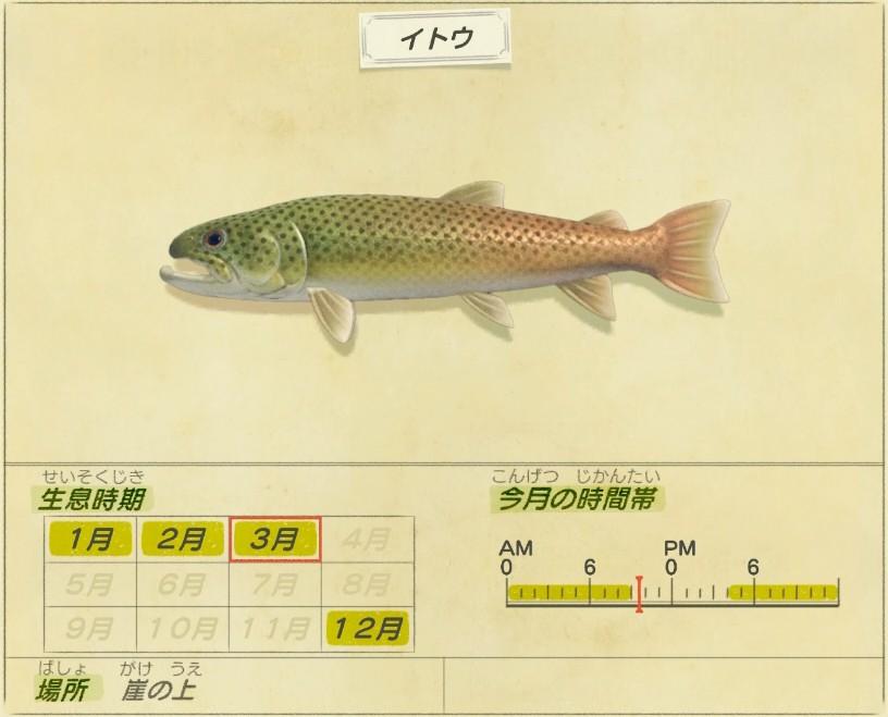 Itou - Japanese huchen
