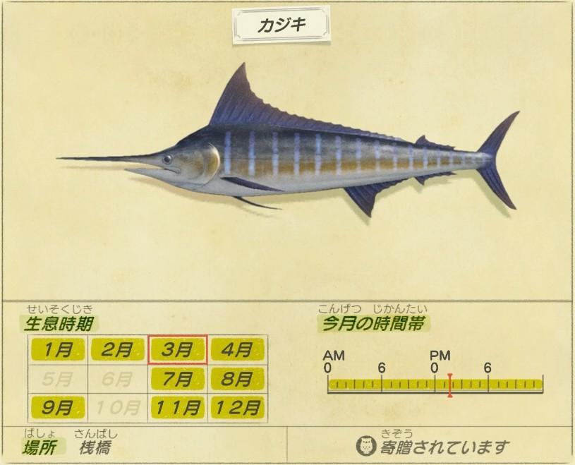 Kajiki - Swordfish