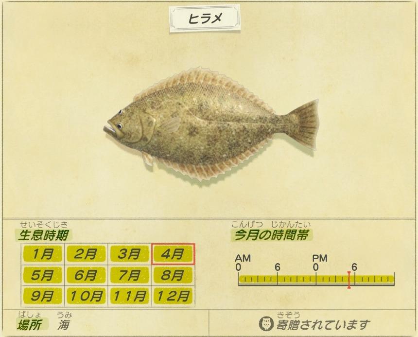 Hirame-Flounder