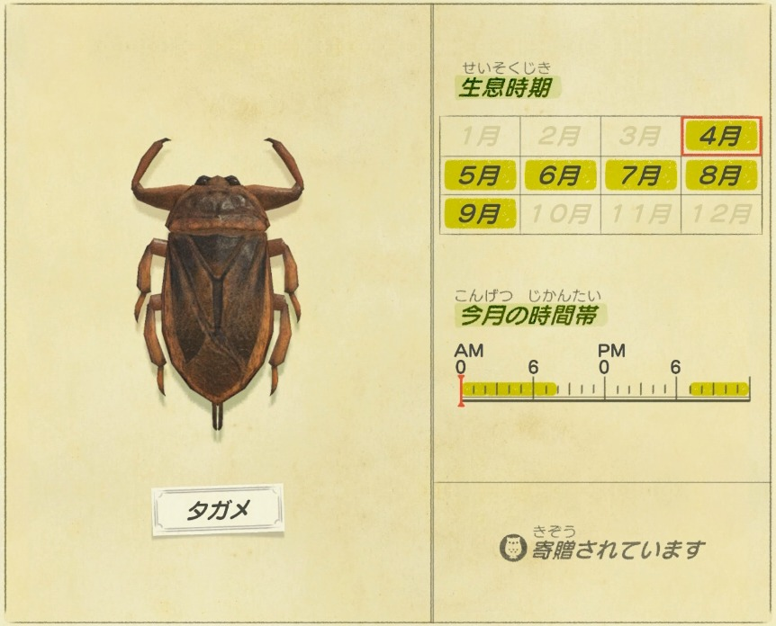 Tagame - Giant water bug