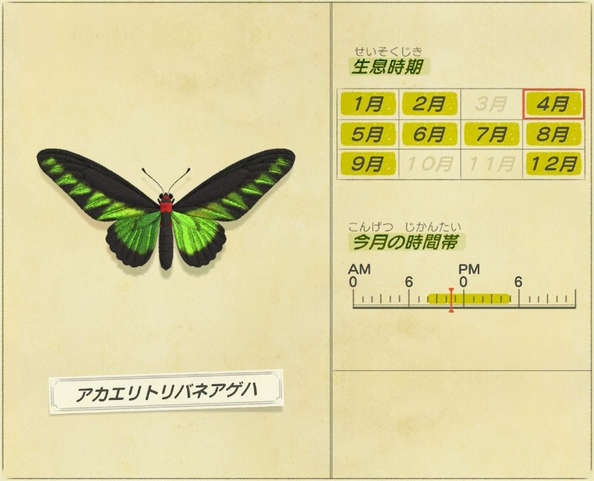 akaeritoribane-ageha - Bird wing