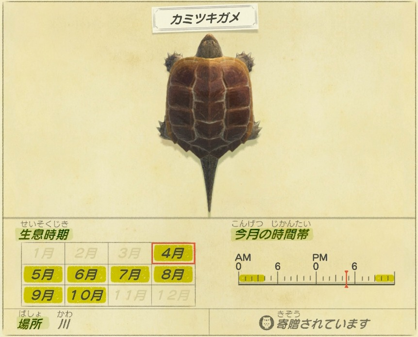 kamitsuki game - Snapping turtle