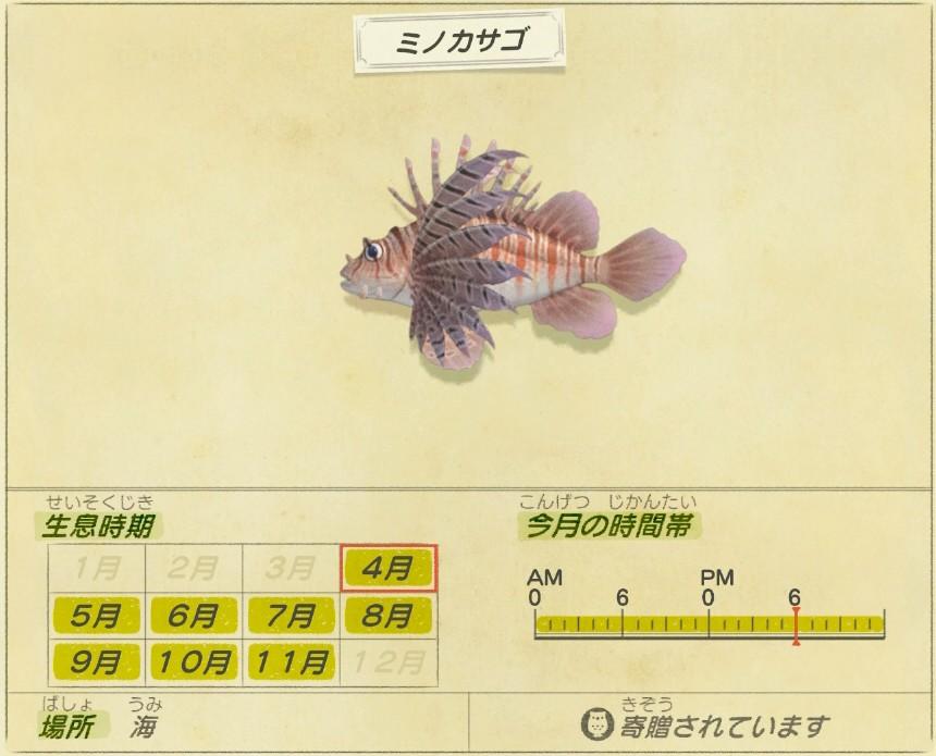 mino kasago - Luna lionfish
