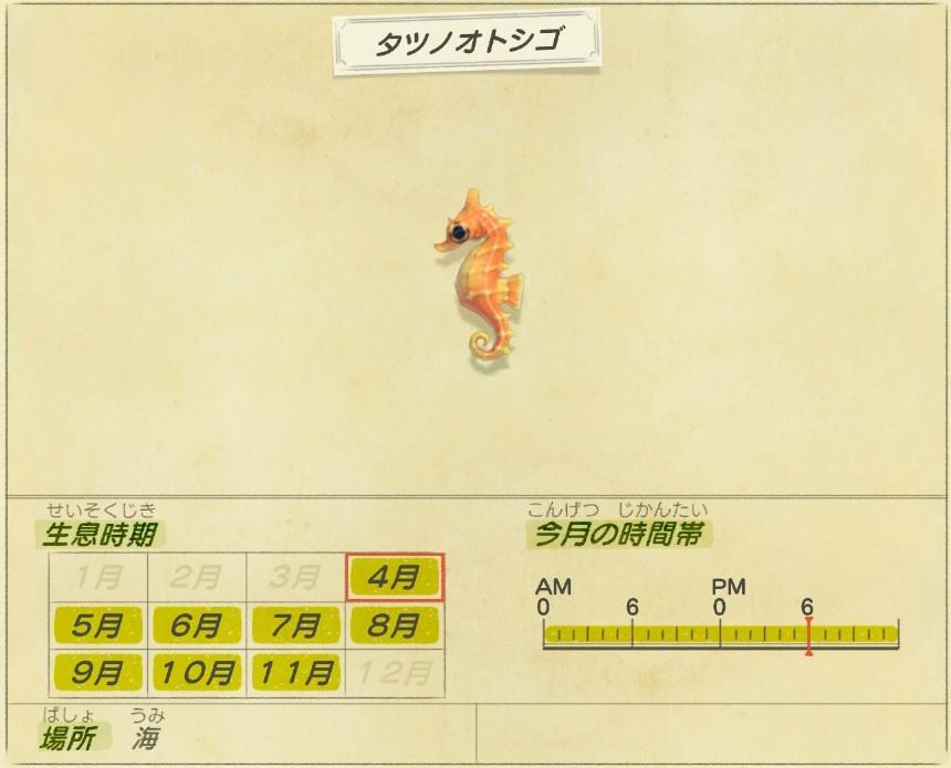 Tatsu no otoshigo - Sea horse