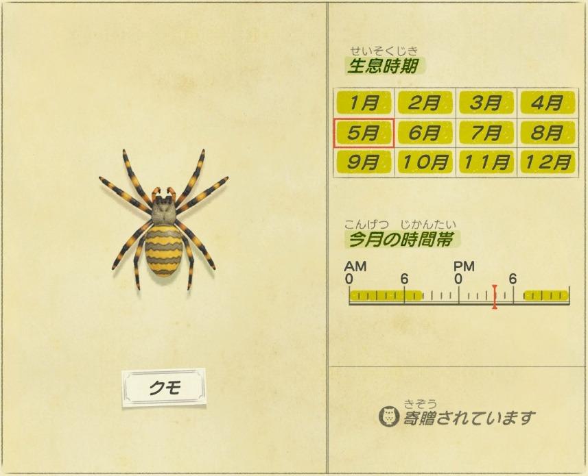クモ -Spider