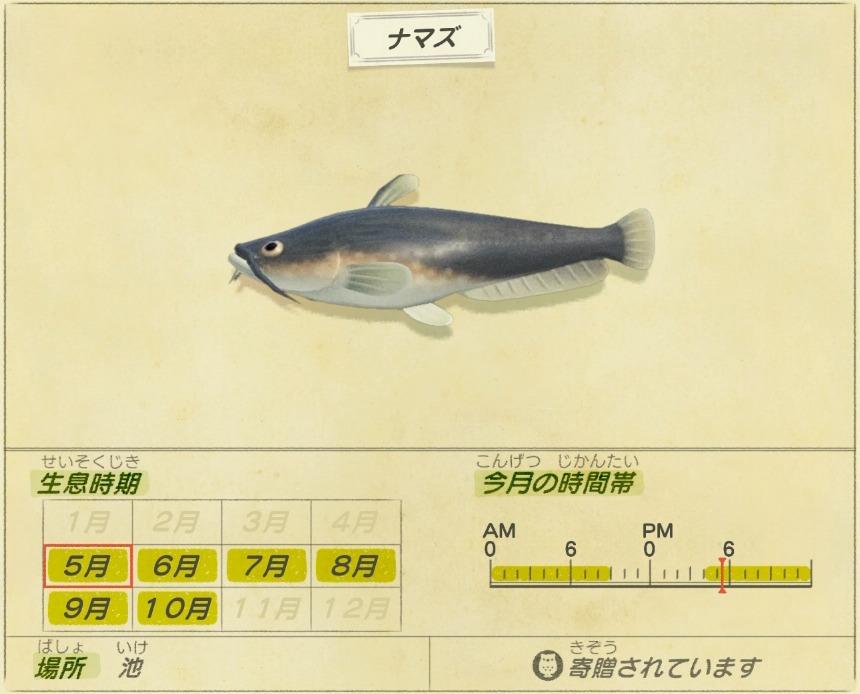 ナマズ - catfish