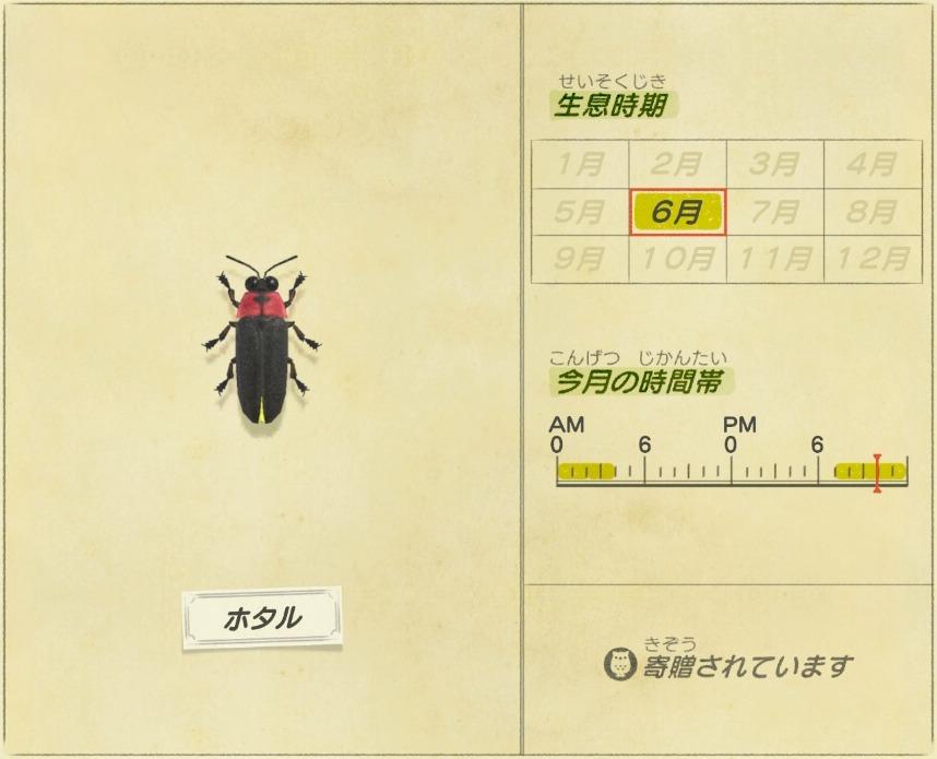 Hotaru - Firefly
