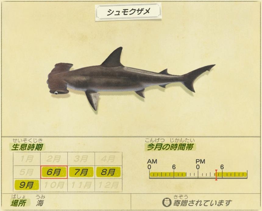 Shumoku zame - Hammerhead shark