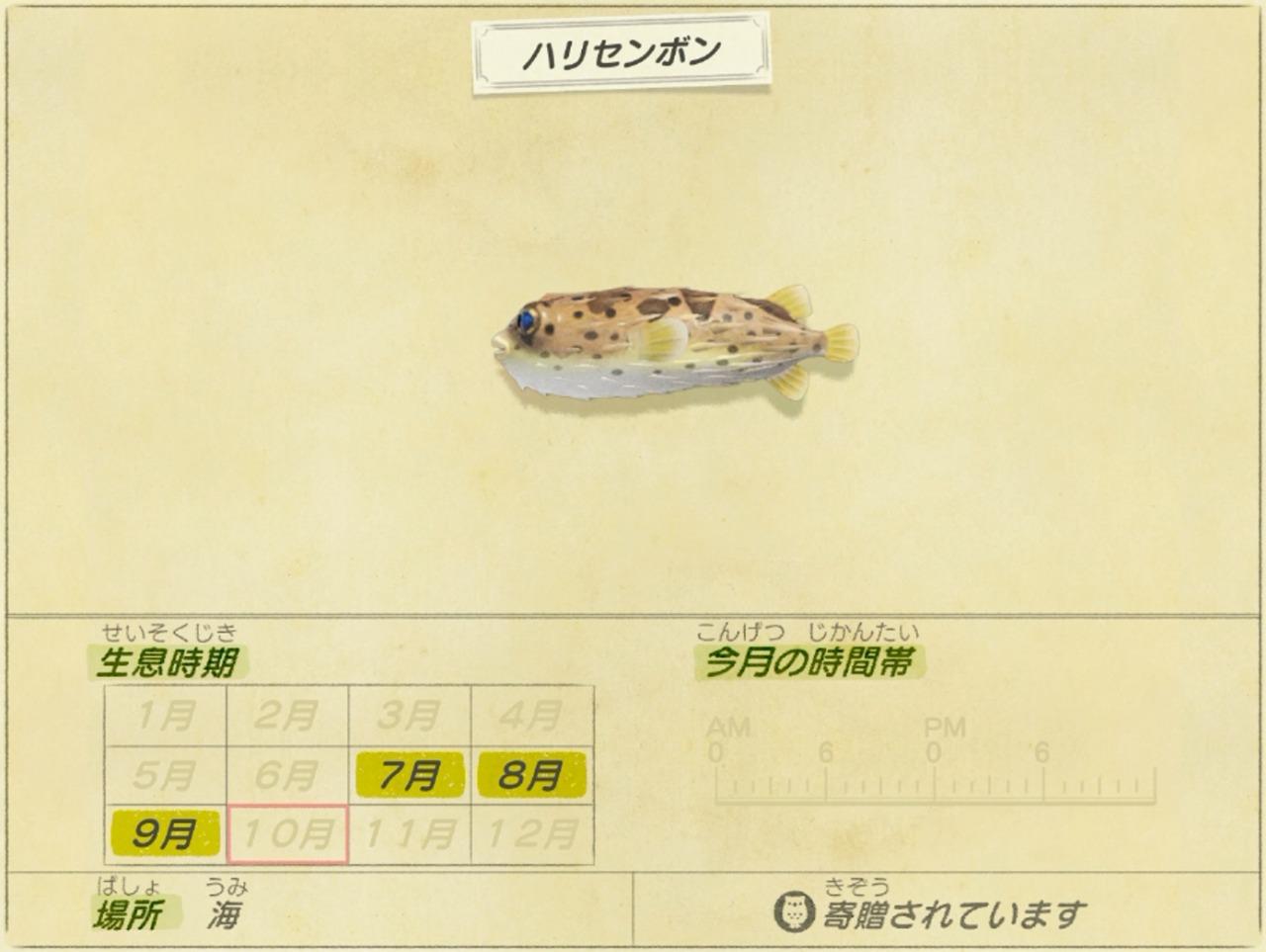 ハリセンボン - porcupinefish