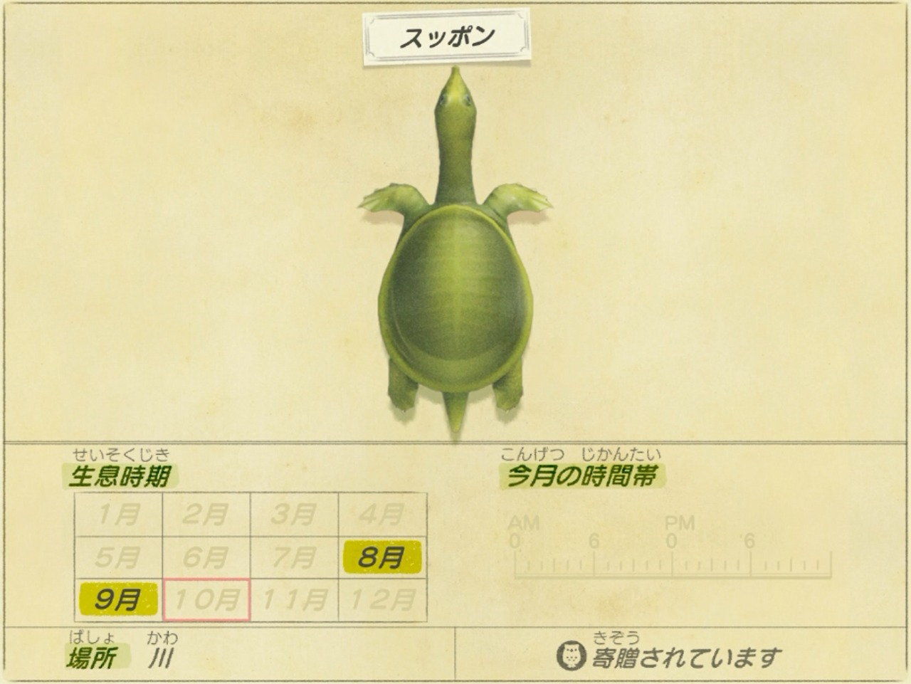 スッポン - Soft-shelled turtle