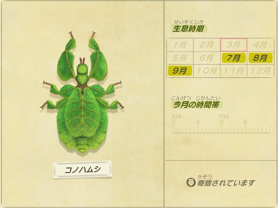 コノハムシ